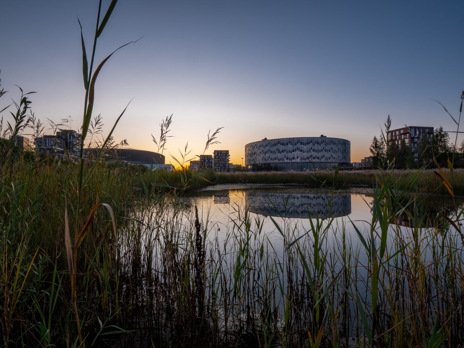 Ørestad at sunrise, Kalvebod Fælled Skole and Royal Arena, fall 2019, by Ørestad based photographer Stefan Grage